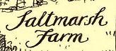 Saltmarsh 40pc